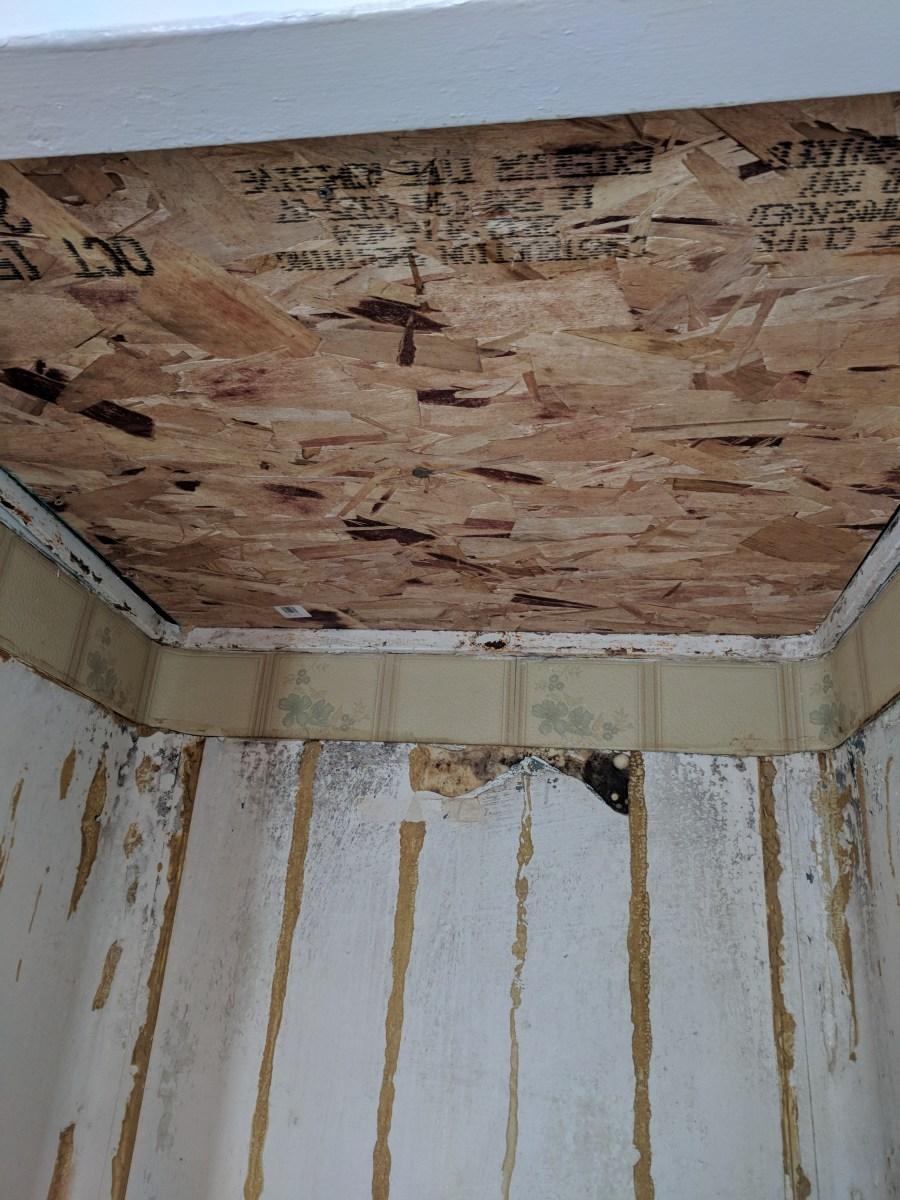 Bathroom shower ceiling osb