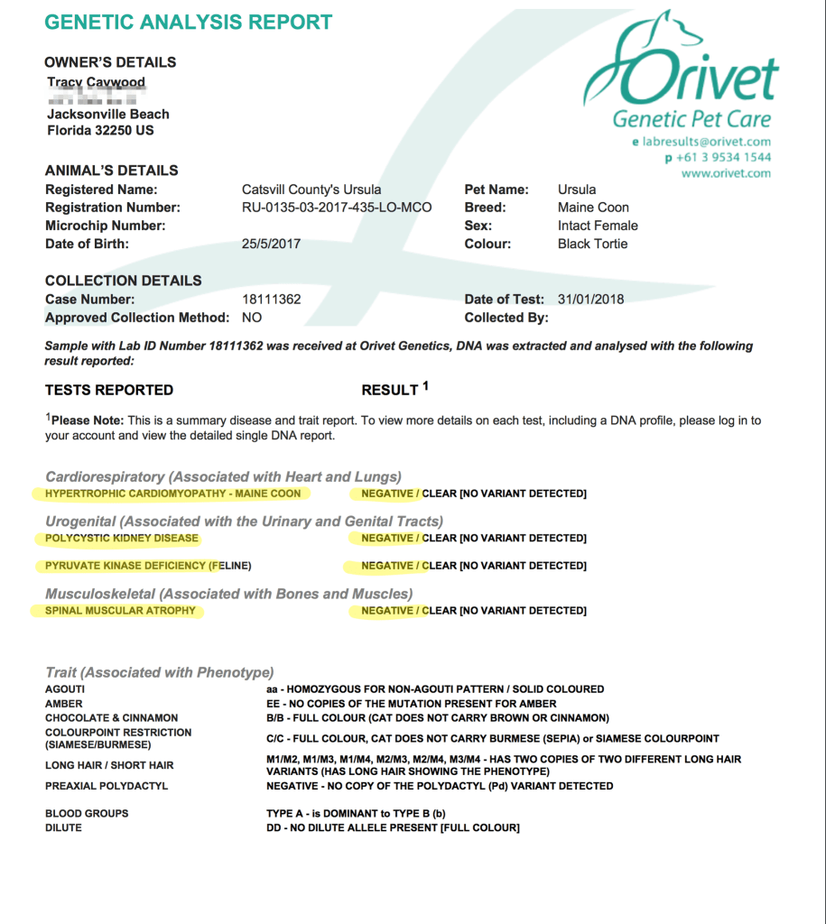 orivet genetic testing maine coon