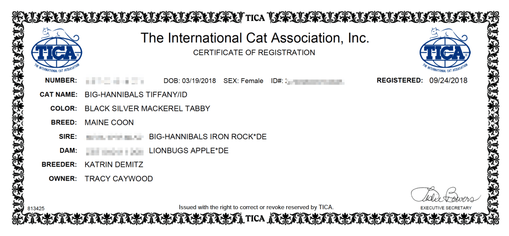 tica registration maine coon