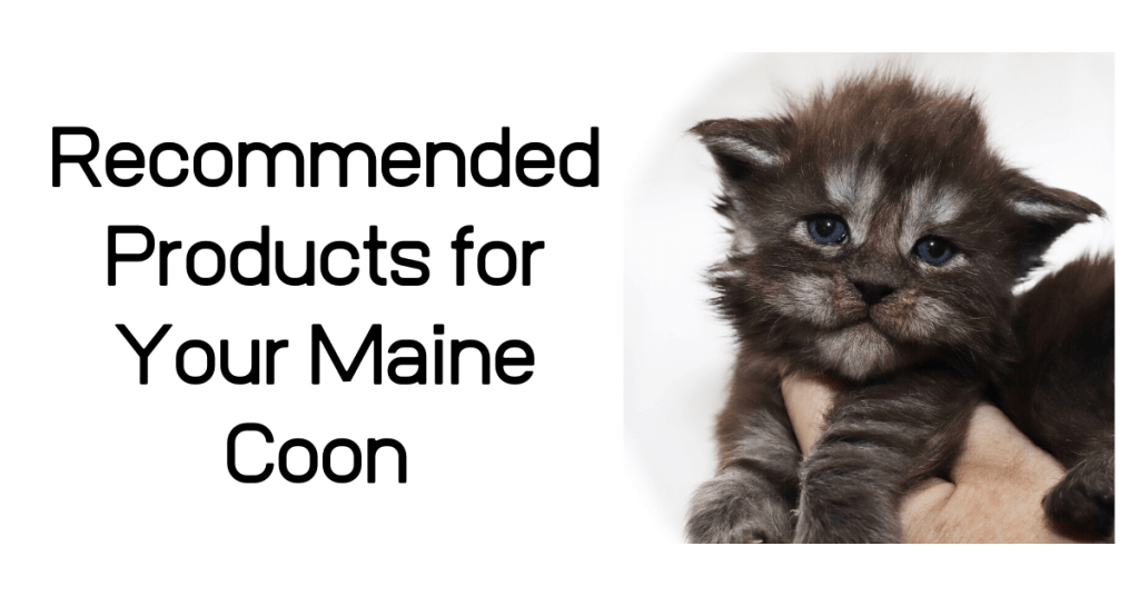 recommended products for Maine Coon