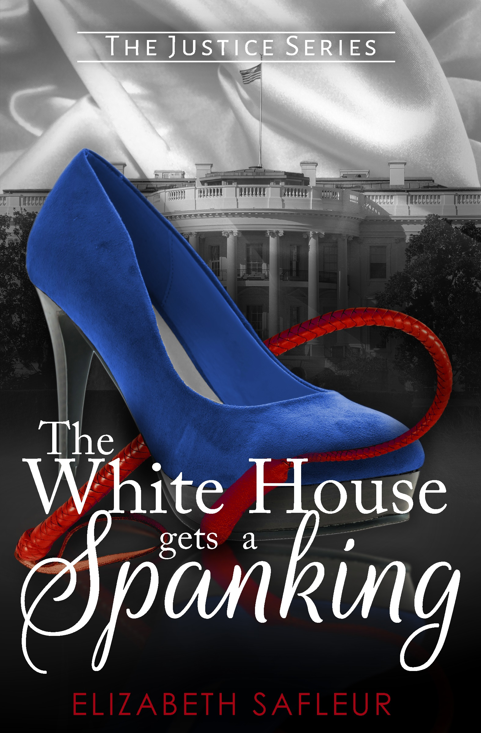 REVIEW: The White House Gets a Spanking by Elizabeth SaFleur