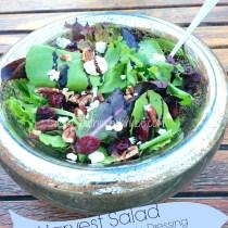 Harvest Salad with Cider Balsamic Dressing