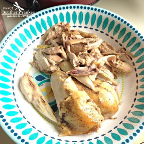 The Best Crock Pot No Noodle Chicken Soup 2