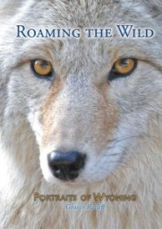 Roaming the Wild