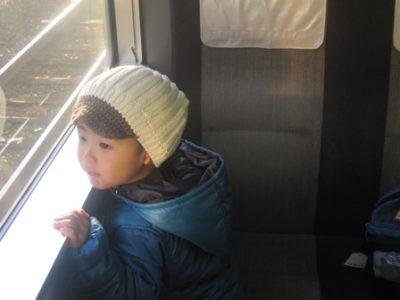 電車の窓から外を眺める息子