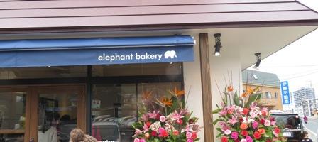 矢野町のパン屋さん、エレファントベーカリー再訪