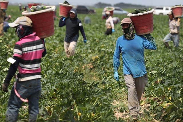 It also wants the minimum wage for farmworkers to be hiked to the same level as the national minimum wage by next year. Domestic workers, whose minimum wage is far lower than the general minimum wage, should earn the same as other workers by 2022, the commission recommends.
