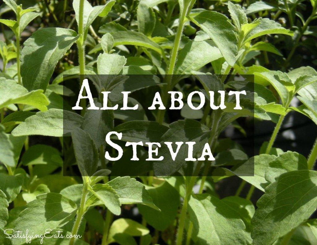 Stevia_rebaudiana_foliage