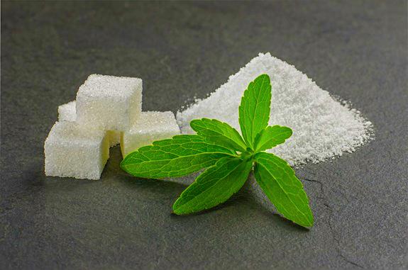 stevia-plant-powder