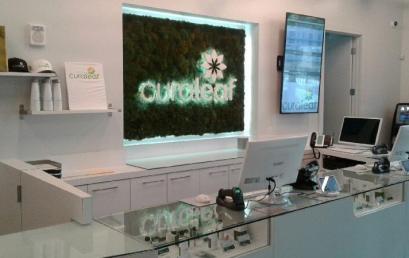 Curaleaf Dispensary – Kendall