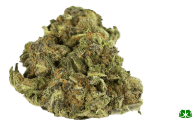 God Strain (Buy Online) | Side Effects, Grow Tips & More