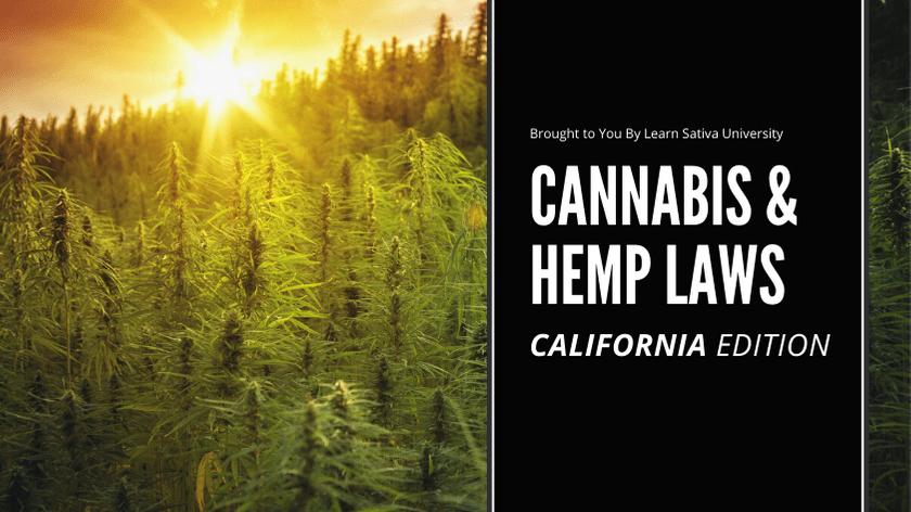 CALIFORNIA MARIJUANA LAWS - CANNABIS & HEMP LAWS