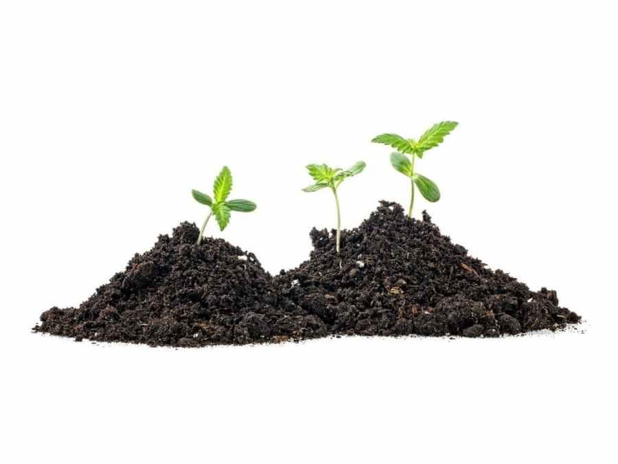 soil grower