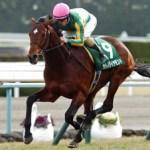 【悲報】大阪杯でサトノダイヤモンドに乗れそうな騎手、戸崎しかいない