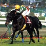 【2016年6月⑦】JRA競走馬歴代賞金ランキング!獲得賞金の多い馬は?第61位~第70位発表!