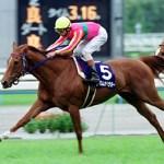 【2016年6月①】JRA競走馬歴代賞金ランキング!獲得賞金の多い馬は?第1位~第10位発表!
