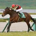 アルアイン迫力増した馬体で神戸新聞杯へ始動