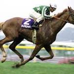 日本競馬史上最も強さと美しさを高いレベルで兼ね備えた競争馬って