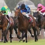 外国馬が日本競馬に通用しない理由って思い馬場に慣れきってるからなの?