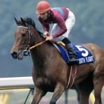 京都千六の最強馬ってどの馬だと思う?