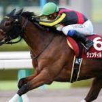 あの戸崎圭太に国内王道G1を勝たせるジェンティルドンナが日本競馬史上最強牝馬