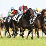 ダービーと菊花賞の2冠馬が生まれないのは何故か