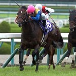 キングカメハメハは古馬王道G1勝った産駒が一頭しかいないのになぜ成功種牡馬扱いされてるのか