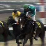 最近の競馬を見てて思うけど、追い込み馬は相当力が抜けてないと勝てない