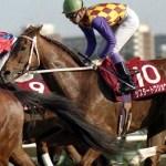 桜花賞馬というフレーズが最も似合う馬