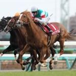 明らかに日本馬のレベルが下がってる件