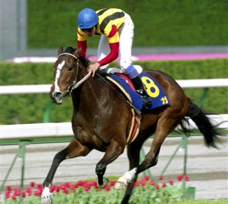 平成の桜花賞馬30頭を挙げていき最期に残ったのが最も地味な馬に認定