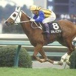 三大センスのある和名競走馬→ユキノビジン、ミライヘノツバサ、あと1頭は?