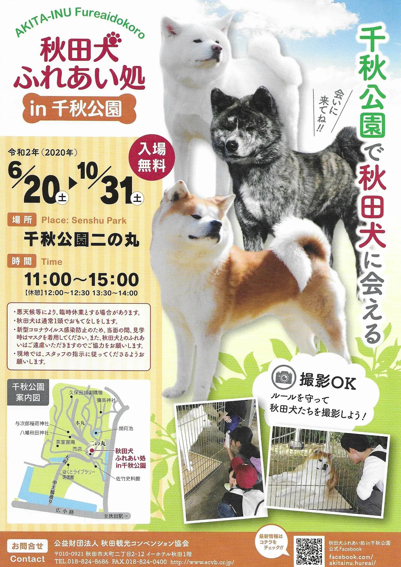 秋田犬ふれあい処イン千秋公園