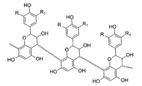 Proanthocyanidins