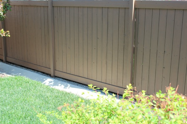 Staining the Fence in Tugboat by Behr