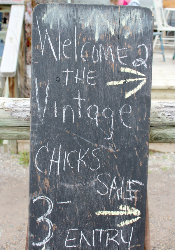 The Vintage Chicks Sale - Chalkboard Sign