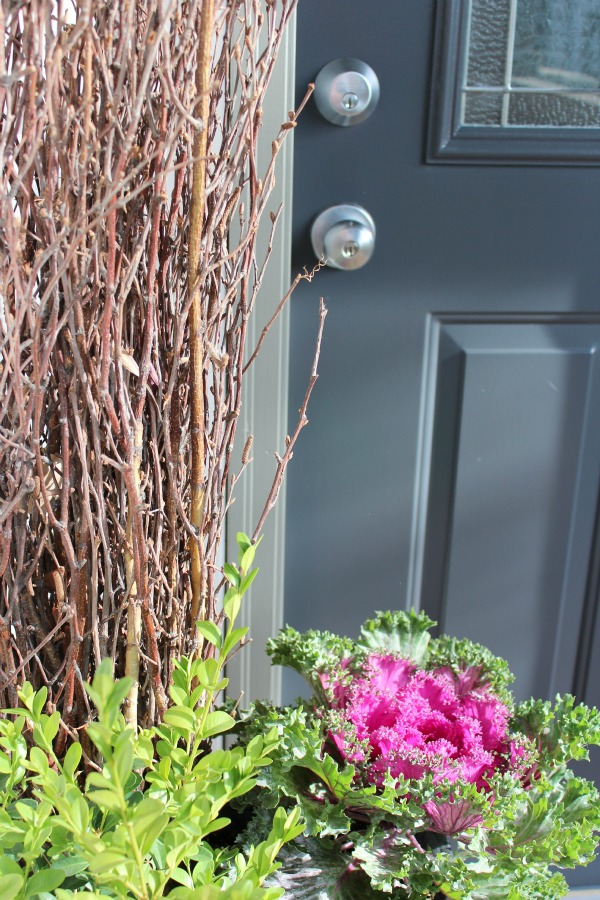 Fall Planter with Ornamental Kale - Benjamin Moore Wrought Iron Door Color