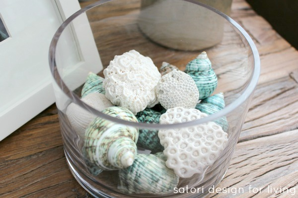 Glass Cylinder Decorating Ideas - Shells and Coral in Glass Cylinder
