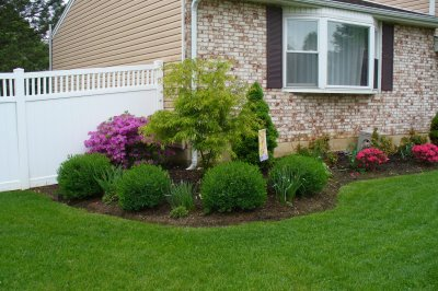 Planting Ideas for Front Yards via Family Balance Sheet