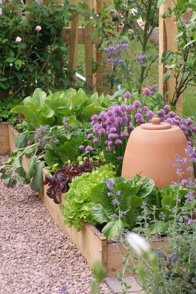 Raised Bed Garden - Raised Bed Garden - Malvern - Crocus Kitchen Garden Blog