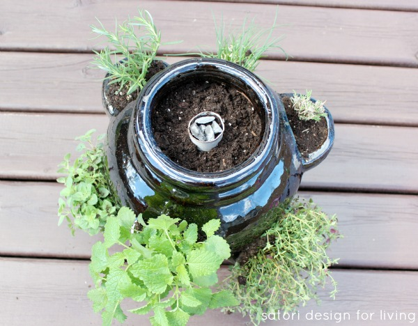How to Plant a Strawberry Pot Herb Garden - Keeping a Strawberry Pot Moist