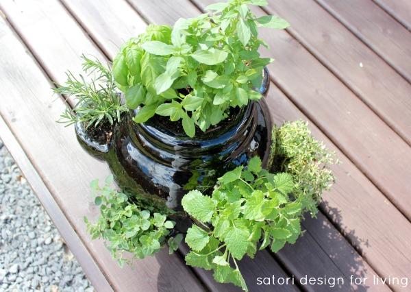 How to Plant a Strawberry Pot Herb Garden - Herb Container Garden Idea