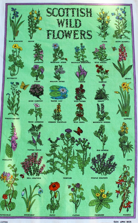 Scottish Wild Flowers Vintage Tea Towel by Glen Appin - Thrift Shop Find - Satori Design for Living