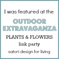 Outdoor Extravaganza Plants & Flowers Feature