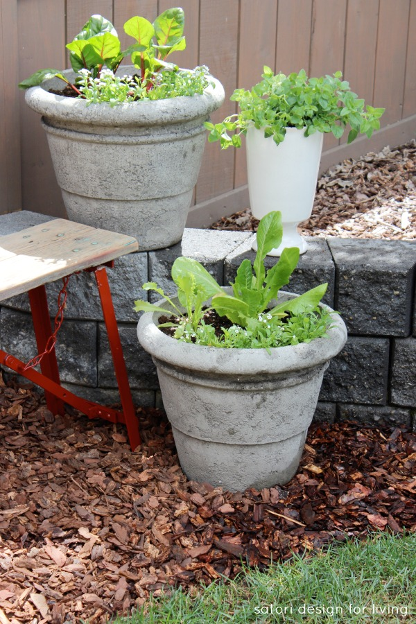 DIY Vegetable, Herb and Flower Container Garden Using a Rustic Bench and Stone Retaining Wall