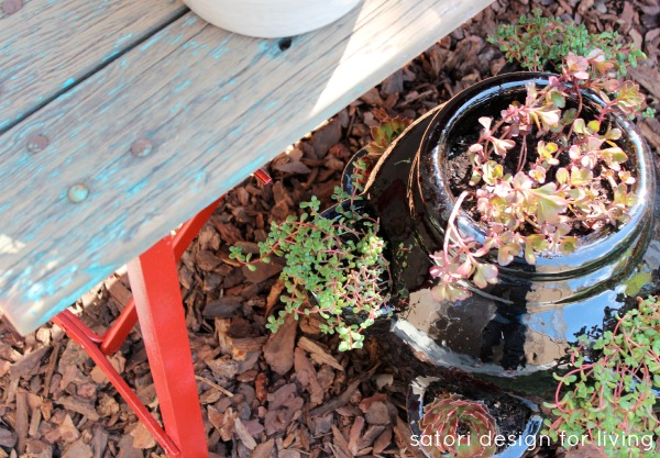 Weathered Red Bench with Succulents in Strawberry Pot - DIY Container Garden - Satori Design for Living