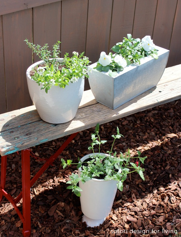Salvaged Bench with a Vegetable, Herb and Flower Container Garden