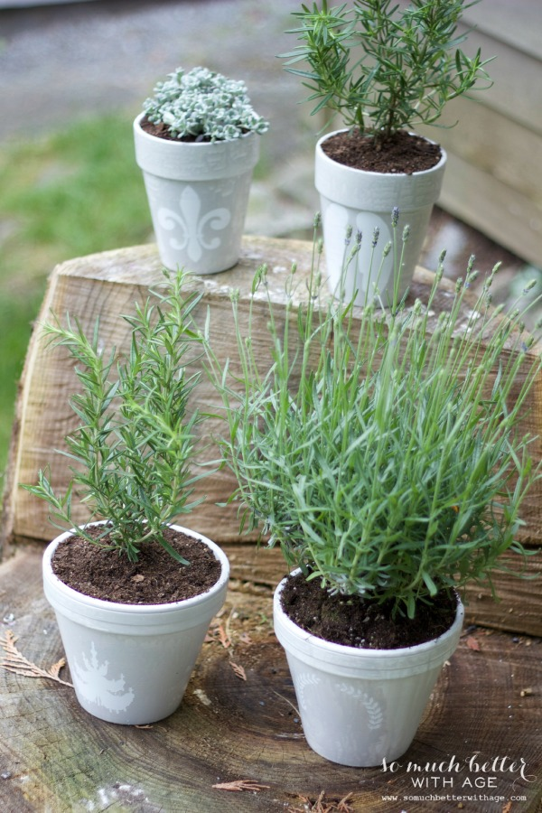 DIY French Glazed Pots by So Much Better with Age