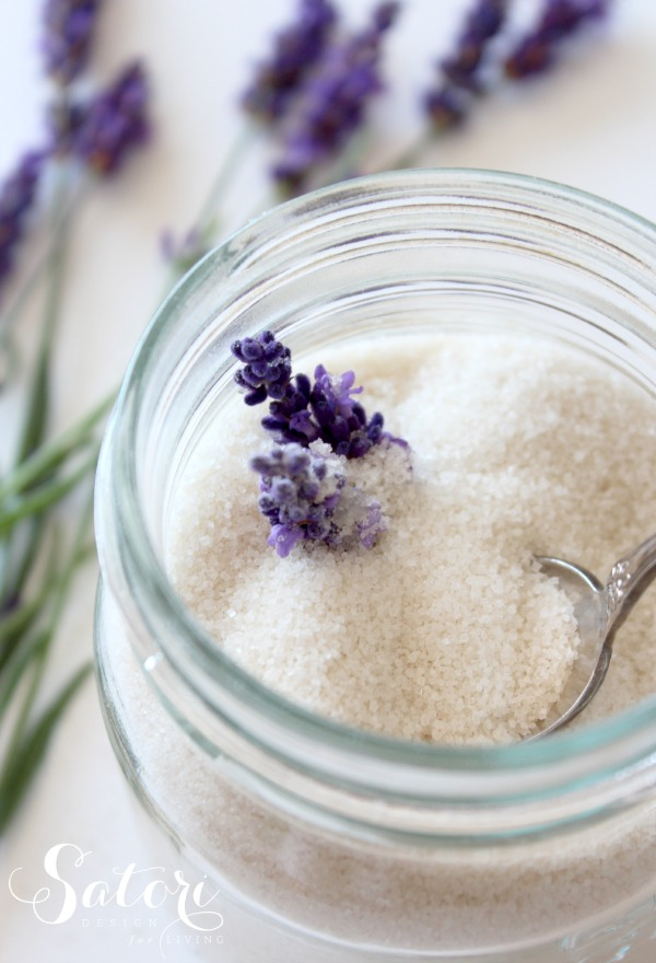 Lavender Infused Sugar by Satori Design for Living