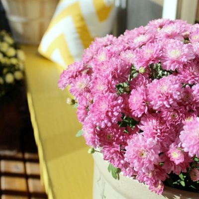 Fall Front Porch with Garden Mums in Crock